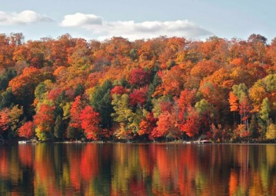 Fall view across lake