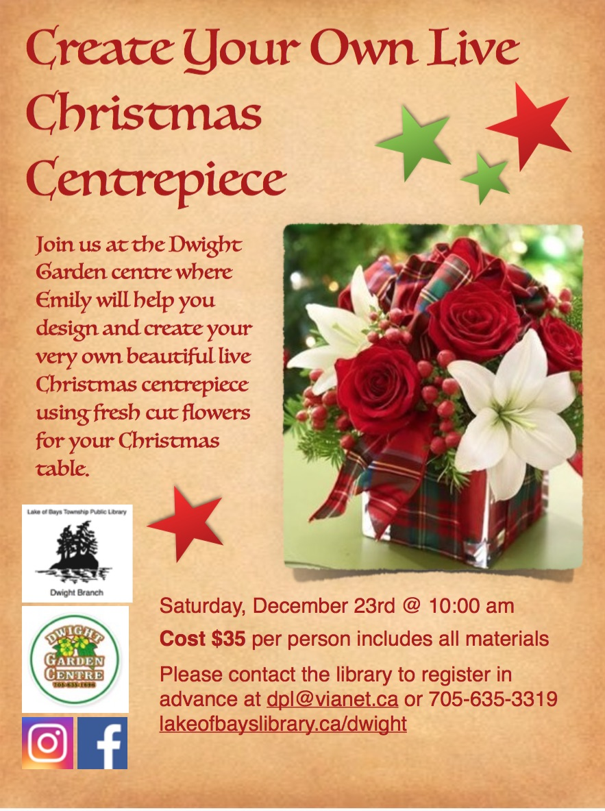 Make a Christmas Centrepiece @ Dwight Garden Centre